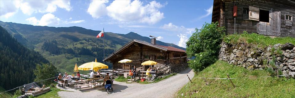Panoramafoto: Tiroler Alm - Alpen